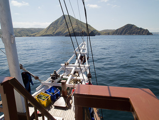 Live Aboard Diving Indonesia