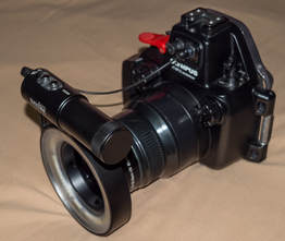 Weefine 3000 Lumen LED Flash